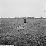 Parachutistenopleiding te Gilze-Rijen (NB), Bestanddeelnr 919-1723.jpg
