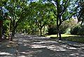 Parc de Benicalap, passeig.JPG