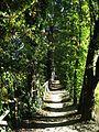 Parco del Loto, percorso vicino ai fiori di loto.JPG