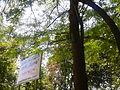 Park Lauta 20.jpg