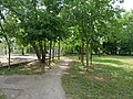 Park at Wasserstadt Spandau 2019-06-11 01.jpg