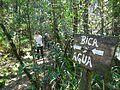 Parque Estadual da Serra do Mar - Nucleo Curucutu 09.jpeg