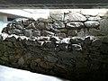 Parte muralla medieval de Noia.jpg