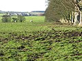 Pastures near High Baulk (3) - geograph.org.uk - 623618.jpg