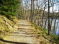 Path Beside Loch Drunkie - geograph.org.uk - 736343.jpg