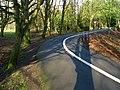 Path near Newforge Lane - geograph.org.uk - 1136675.jpg