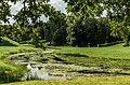 Pavlovsk Park 2013-06.jpg