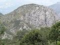 Peñón Payares (626m) - panoramio.jpg