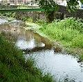 Pendle Water - panoramio (1).jpg