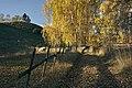 PermaLiv kulturlandskap i høstfarger 17-10-20 1.jpg