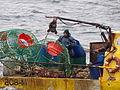 Pesca de centolla en la Bahía Ushuaia 08.JPG