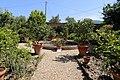 Pescia, villa la guardatoia, giardini, aiuole all'italiana 01.jpg