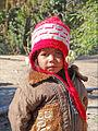 Petit népalais (Région de Nagarkot) (8450633364).jpg