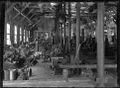 Petone Railway Workshops. Interior view of a portion of the Machine Shop. ATLIB 273560.png