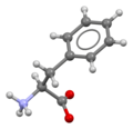 Phenylalanine-from-xtal-3D-bs-17.png