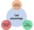 Physiology (transparent).png