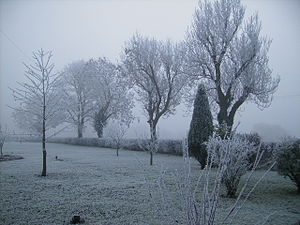 Heavy frost near Pickering. The temperature was -2degC when this picture was taken. Pickering Frost.jpg
