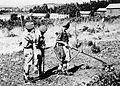 PikiWiki Israel 21120 The Palmach.jpg