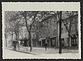 Place de Saint-Paul-Trois-châteaux (34715713675).jpg