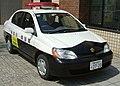 Platz-policecar.jpg