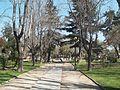 Plaza guarello.JPG