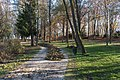 Poertschach Halbinselpromenade Herbstpark 12112015 8896.jpg