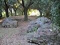 Poggio di Rocca, Montopoli,12.JPG