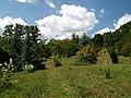 Poltava Botanical Garden (176).jpg