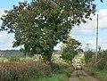 Pople's Lane, near Mells - geograph.org.uk - 1014819.jpg