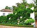 Por detrás de la casa de osorio - panoramio.jpg