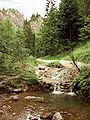 Potok kamionka - wylot wawozu homole.jpg