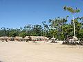 Praia da Barra Velha - Soure - Ilha do Marajó - Pará.jpg