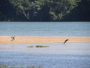 National park (Brazil) - Ilha Grande National Park