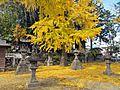 Precincts of Taga-jinja shrine in Taihaku ward,Sendai city 1.JPG
