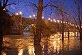 Puente de Piedra, Ebro crecido - panoramio.jpg