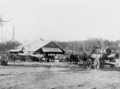 Queensland State Archives 3390 State Sawmill Pikedale 1920.png