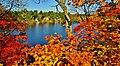 Quelque part au lac Rawdon... - panoramio.jpg