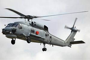 Fleet Air Arm (RAN) - The S-70 Seahawk, operated by 816 Squadron, is the most numerous aircraft in the Fleet Air Arms's inventory