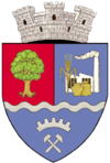 Coat of arms of Ștei