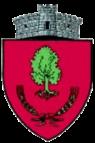 ROU SV Bosanci CoA.png