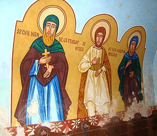 RO HD Biserica Buna Vestire din Baita (36).jpg