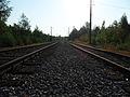 Rails in the Westpark, Bochum.jpg