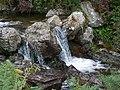 Rapids on the upper Tullybranigan River - geograph.org.uk - 1472072.jpg