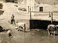 Razglednica Cerknice 1940 (2-1).jpg