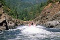 Recreation, jet boat excursion, Rogue River Wild & Scenic River, Rogue River-Siskiyou National Forest (37019074482).jpg