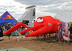 Red Bull Flugtag 2011 Moscow - participating machines 09.jpg