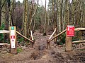 Red Route Cycling Course through Bedgebury Forest - geograph.org.uk - 1195997.jpg