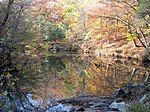 File:Reflection Cole Mill Access Eno River SP NC 3448 (4091371852).jpg
