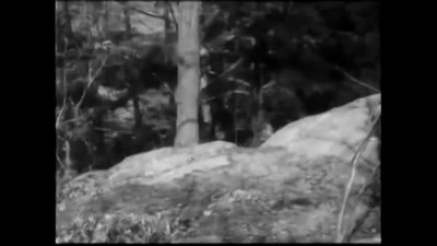 File:Rescued from an Eagle's Nest (1908).webm