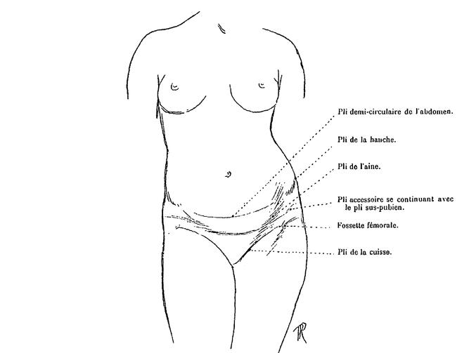les flancs du corps humain